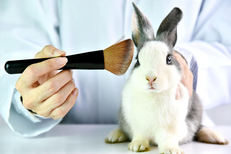 Cosmetici Cruelty Free: come orientarsi nella scelta